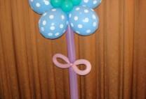 Λουλούδι μαργαρίτα με ήλιον